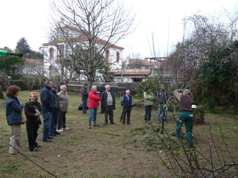 Curso de jardiner a en celorio noticias for Curso de jardineria
