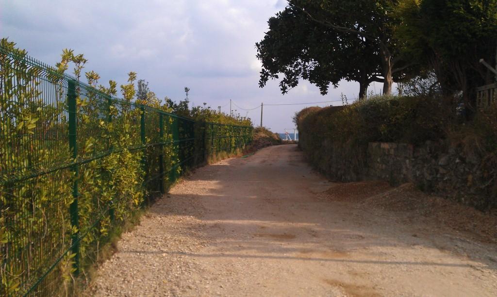 Estado de las obras de asfaltado del camino a Picu en Celorio - Celoriu.com