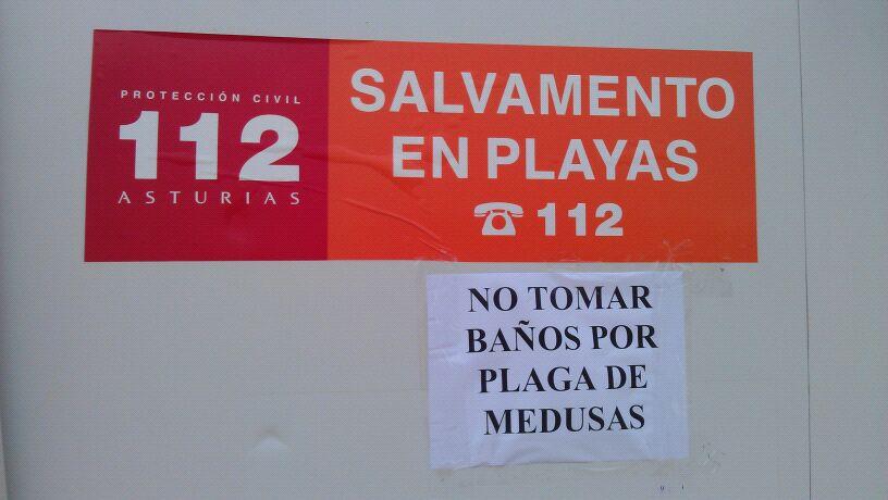 Un cartel alertaba ayer de la presencia de medusas en Borizu - Celoriu.com
