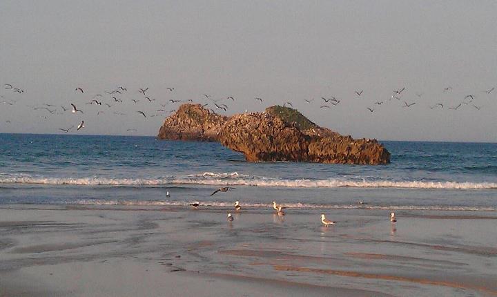 """El Castru Gaiteru y el """"león"""" o Peñamesada, en la playa de Palombina de Celorio - Celoriu.com"""
