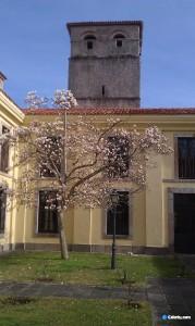 Jardines y Torre del Monasterio de San Salvador de Celorio - Celoriu.com
