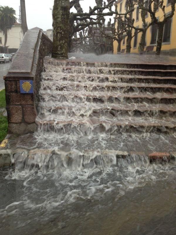 El paseo del parque Posada Herrera, esta misma tarde (@Crismv_94) - Celoriu.com