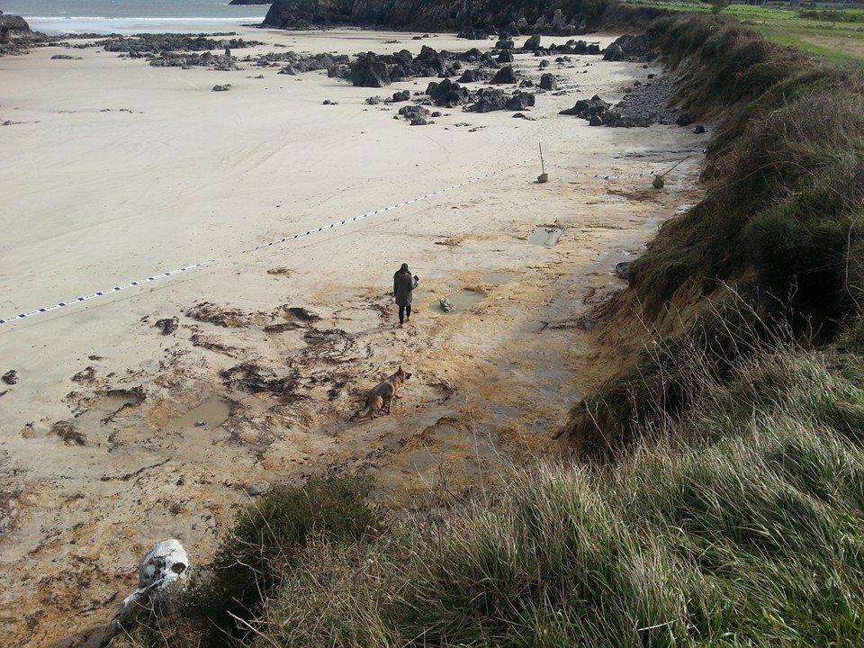 La marea descubre varias fosas con restos oseos en Celorio, Llanes - Celoriu.com