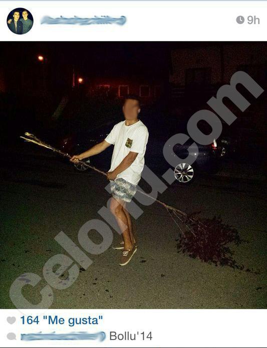 Unos jóvenes presumen de arrancar los árboles de Celorio el dia del Bollu - Celoriu.com