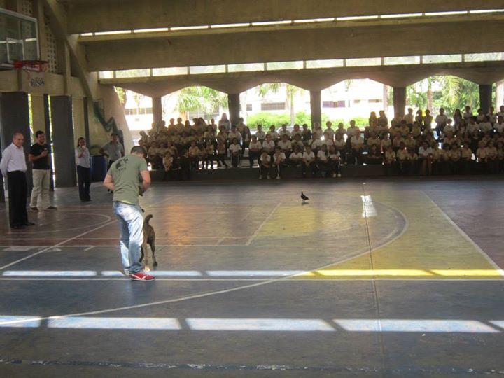 Pachu, durante una de las instrucciones llevadas a cabo en Santo Domingo - Celoriu.com